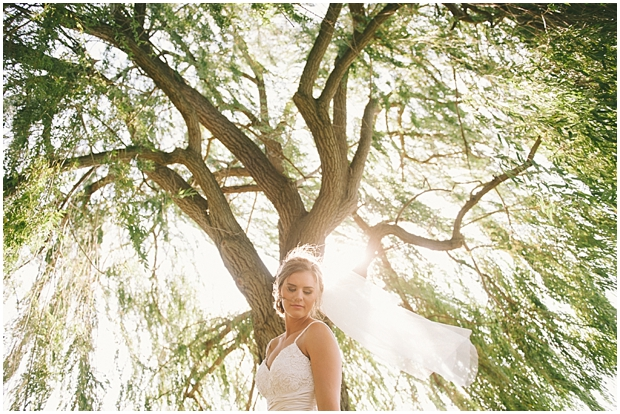 summerhill pyramid winery wedding | sharalee prang photography_269